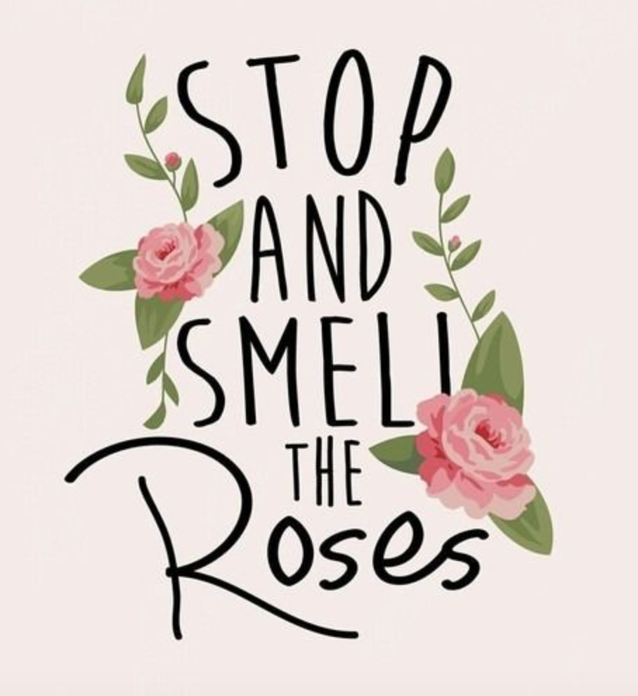 Stop and smell the roses quote