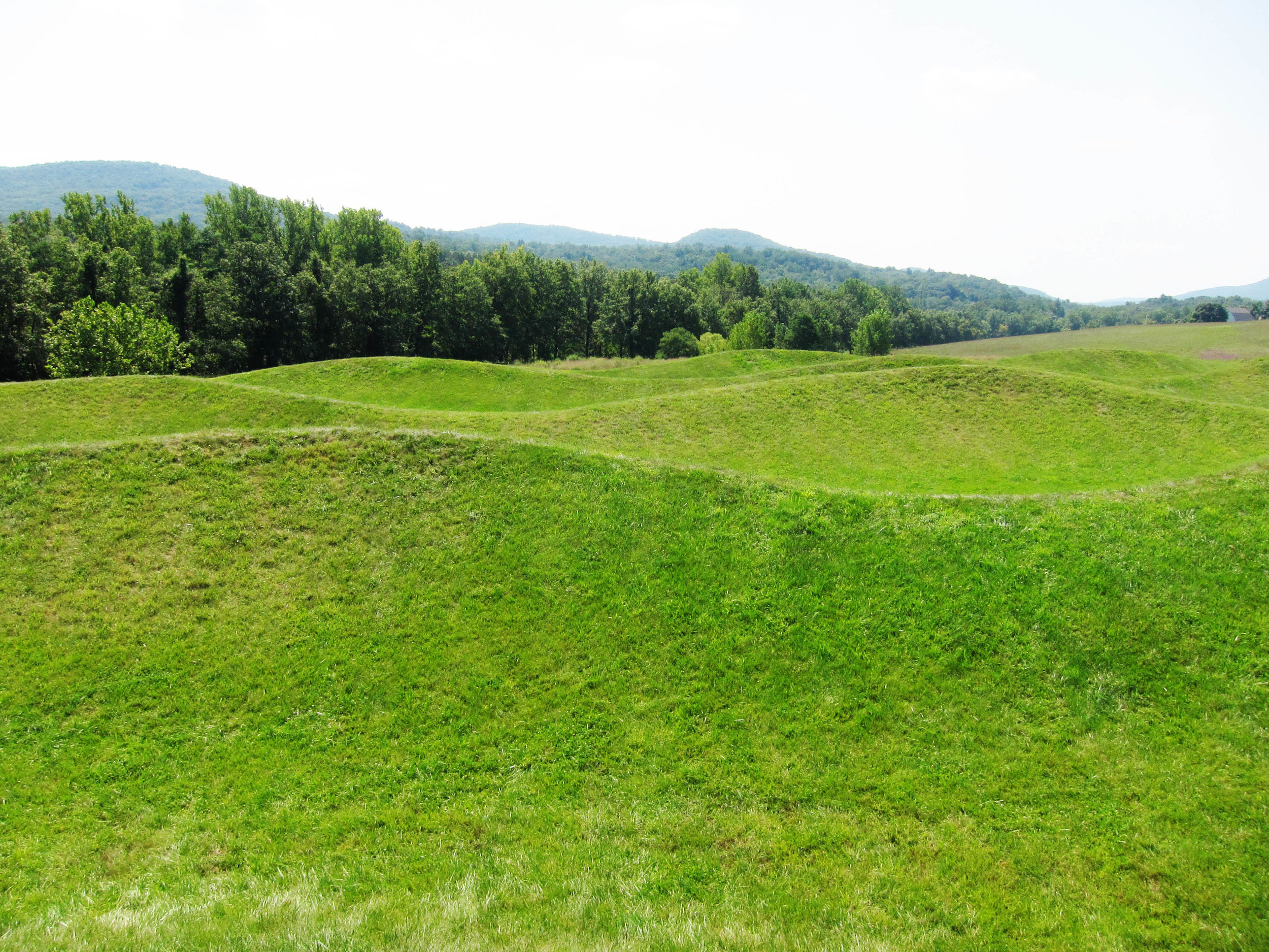 Maya Lin,  Storm King Wavefield, 2007-2008; photo credit: by the author
