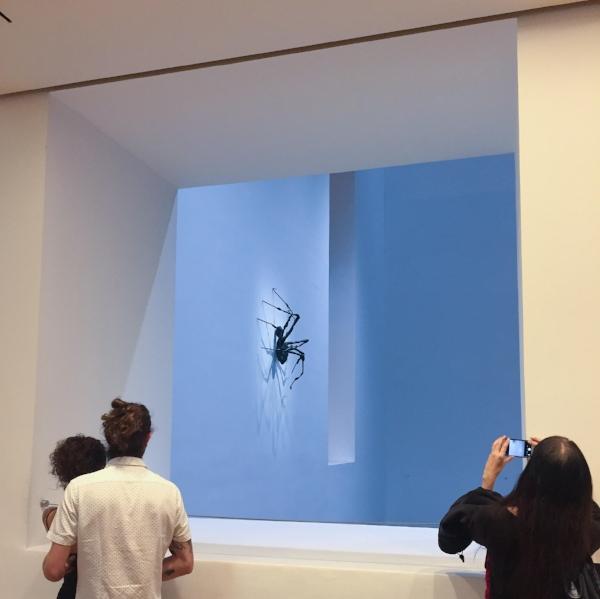 Louise Bourgeois: An Unfolding Portrait exhibition (Photo by Jacque Donaldson)