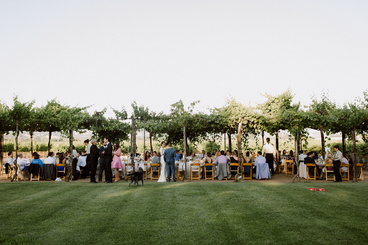 Wedding guest taking their seats for dinner.