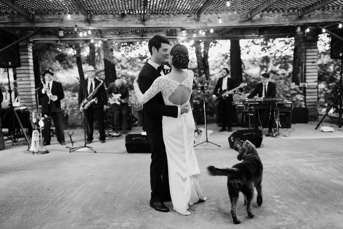 Adam & Betsy's first dance.