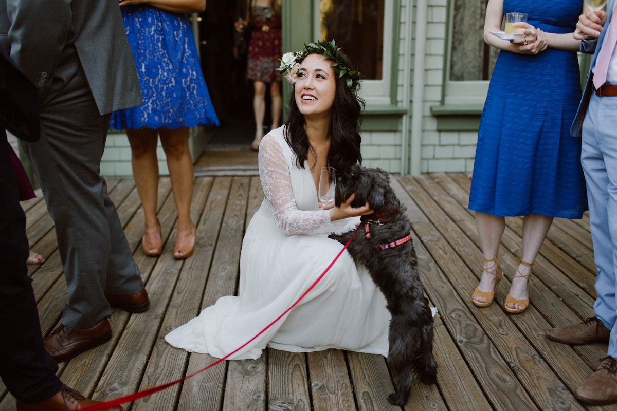 Bride with yorkie at the Falkirk Cultural Center.