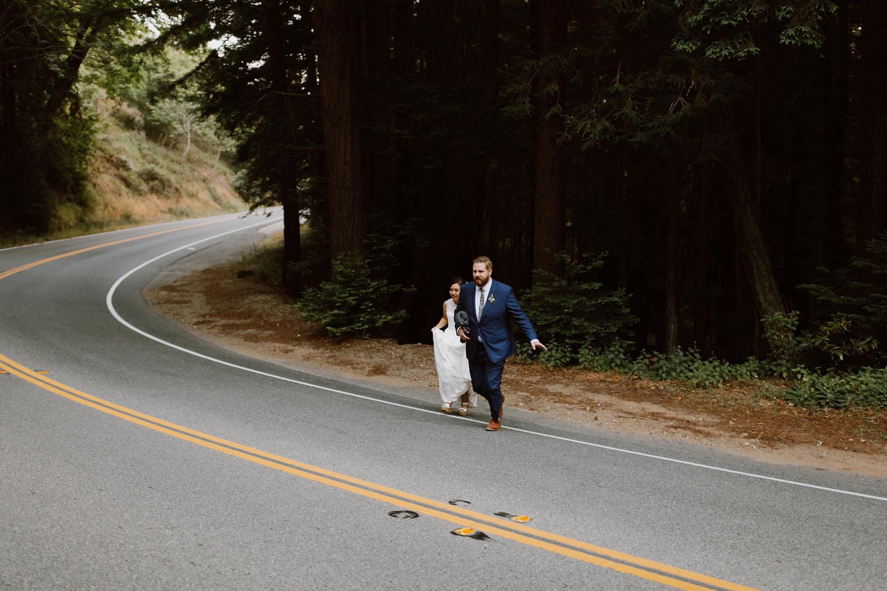 Wedding portraits at Big Sur.
