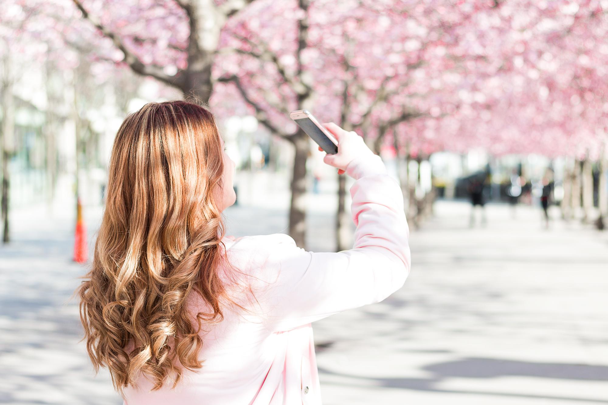 Cherry blossom | Stockholm | Sandramarias.com