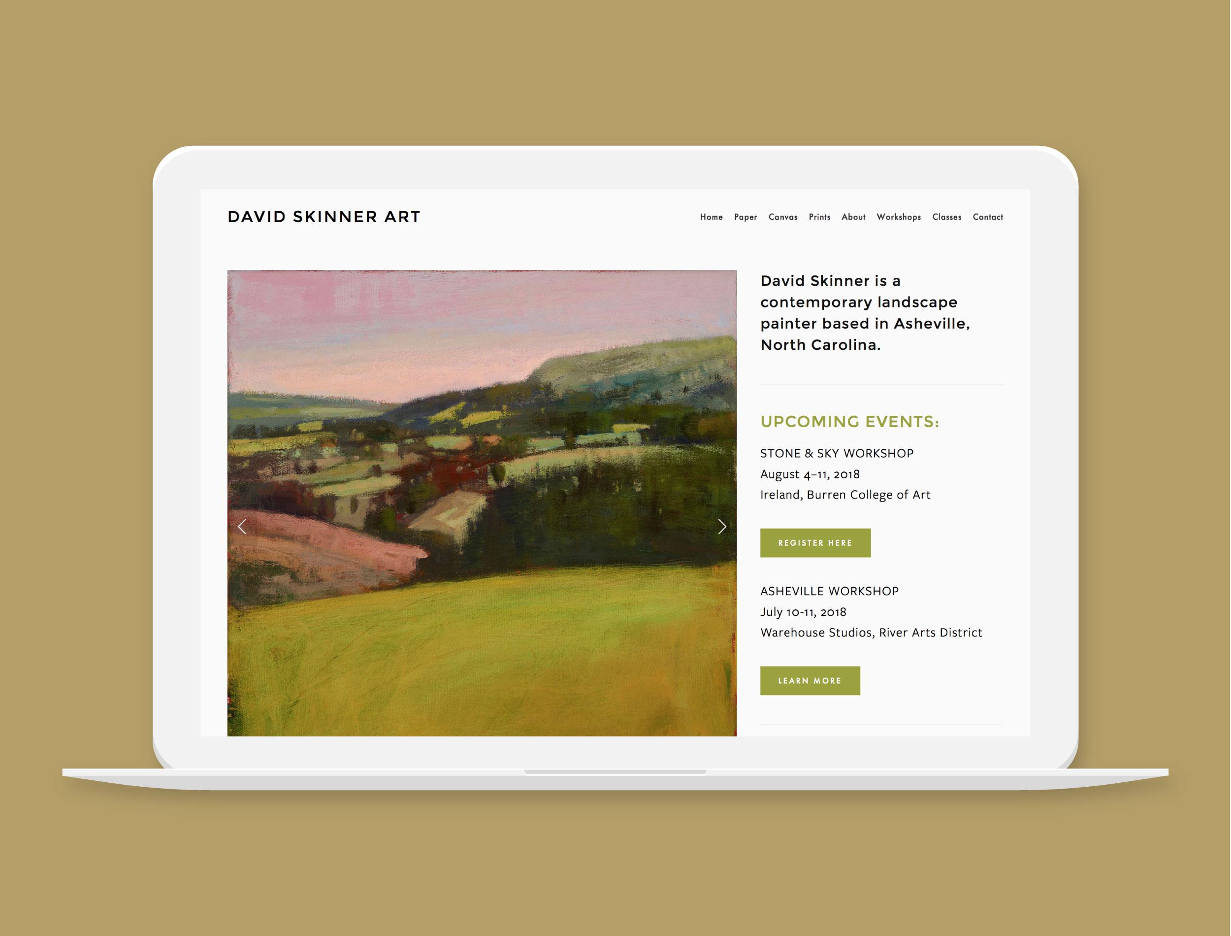 David Skinner Art   Asheville Contemporary Painter   Project Details   Visit Website