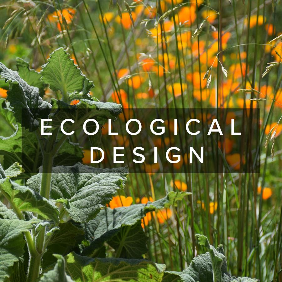 ecologicaldesign.jpg