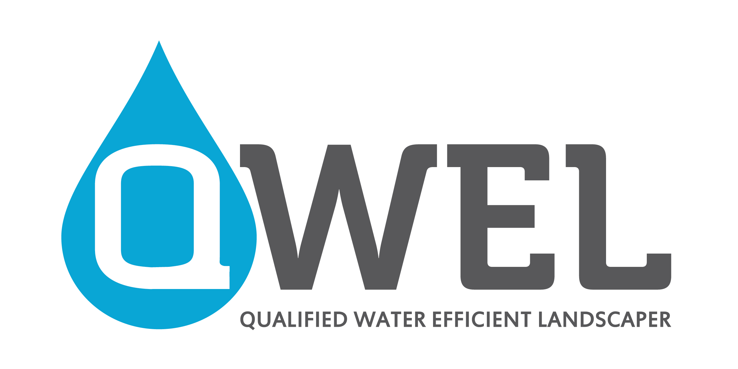 QWEL_Logo (1).png
