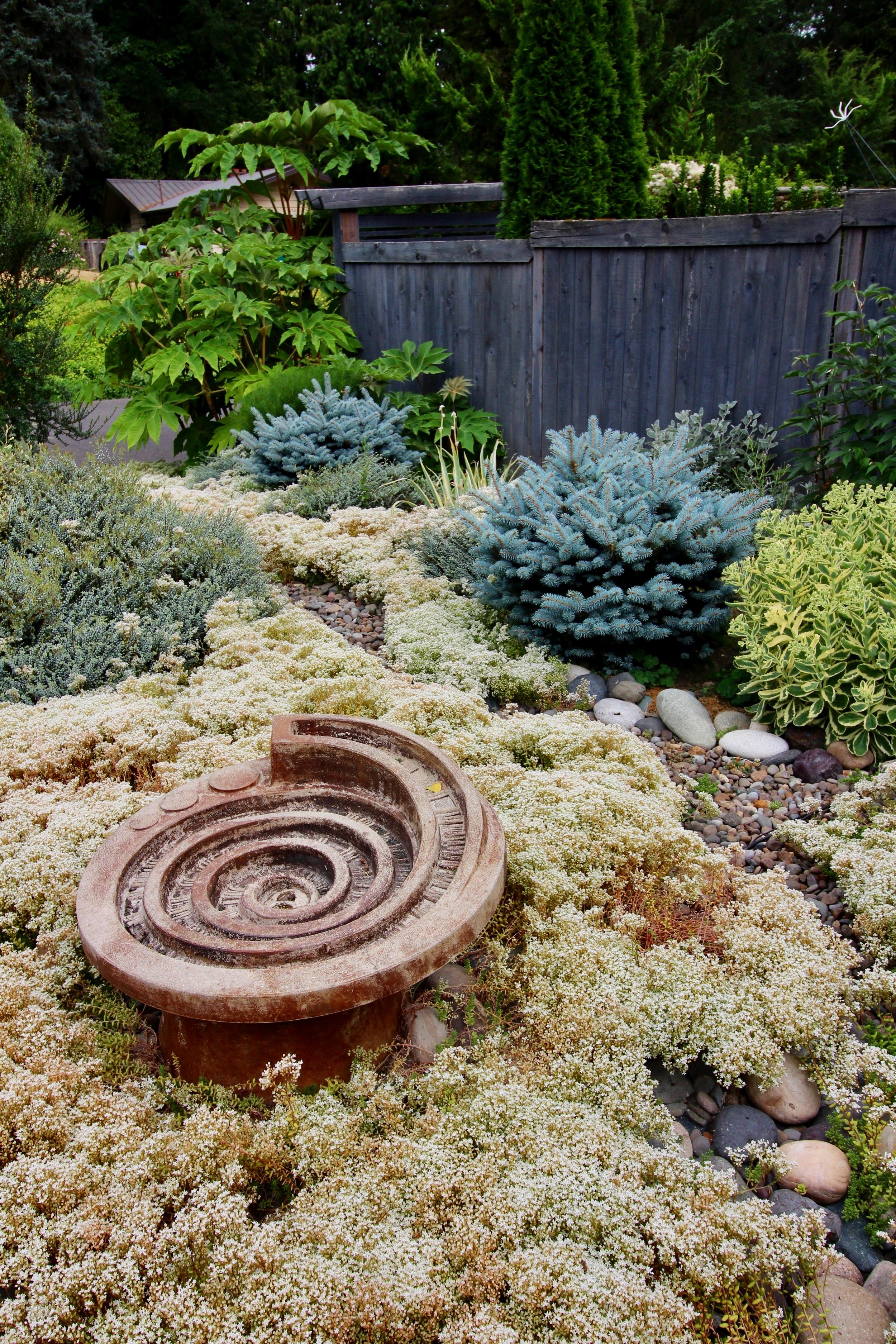 Marian's Minimal Maintenance Garden
