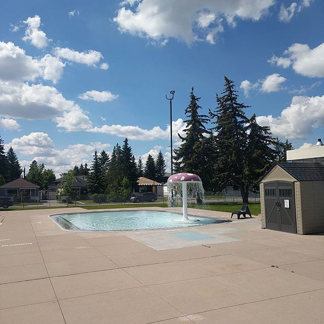 Here at Bowview we have things like a mushroom that sprays water, chairs, and grass. All are depicted in this picture. Unlike previous pictures the depicted pool is open to the public on a sunny day! Cmon down for 12pm lane swim and 2pm public swim today and we'll see you there!  #fungihahaha #fun #guy #chair #blue #wadingpool