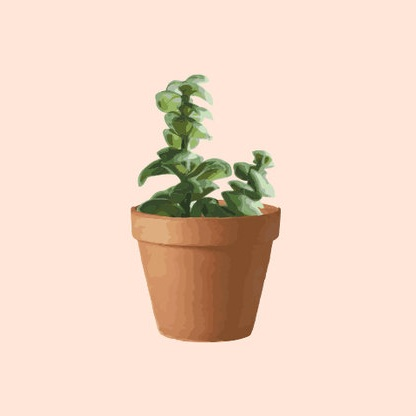 plants.skills.jpg