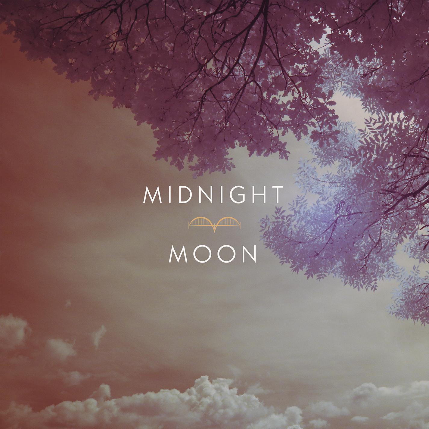 Midnight Moon - Various Artists