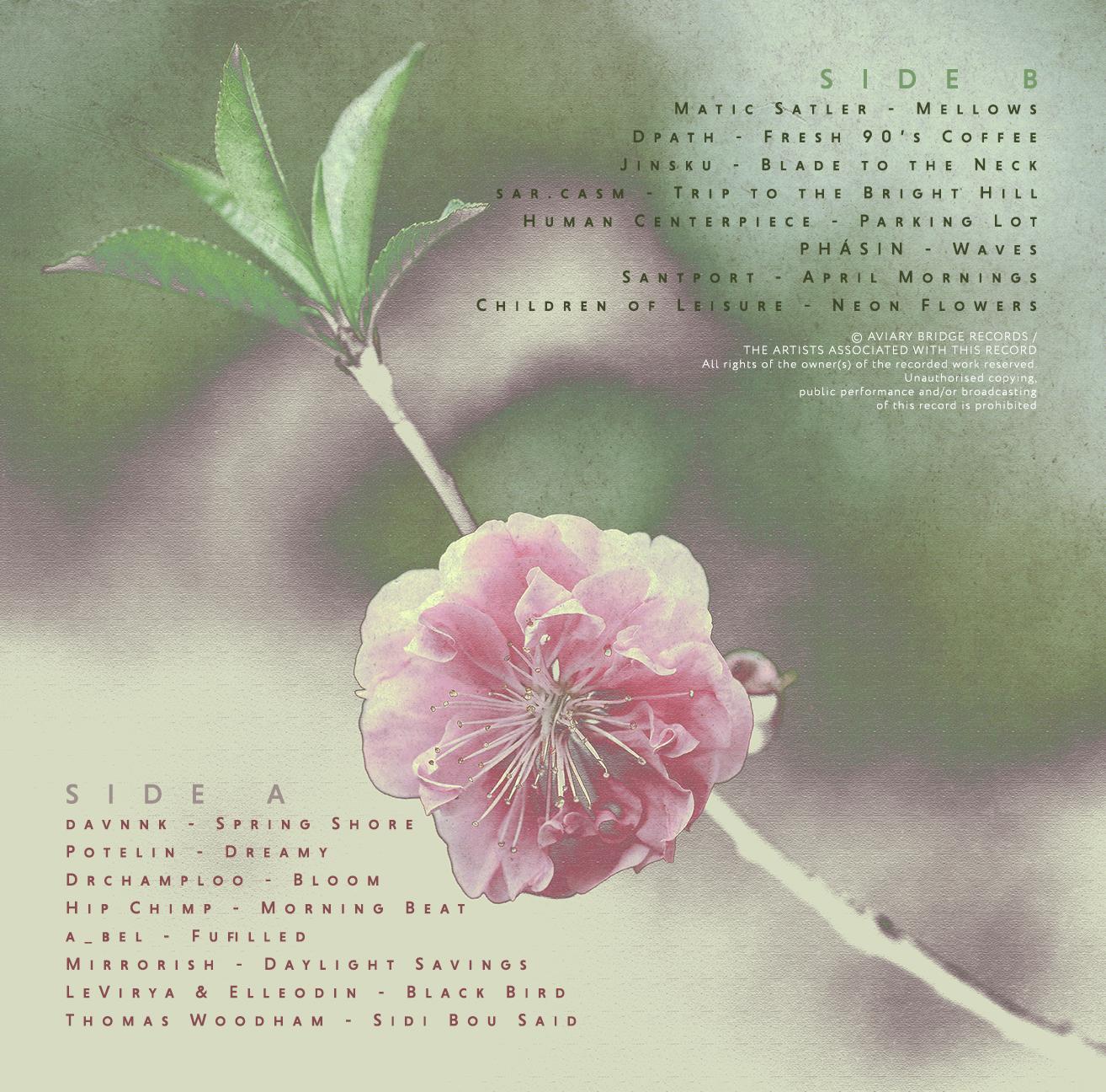 SpringCassette_InsideFinal.jpg