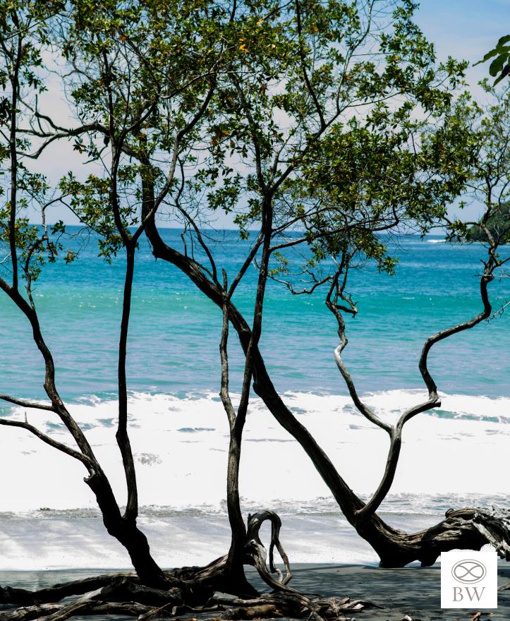 Beth-Webb-Costa-Rica-A.jpg