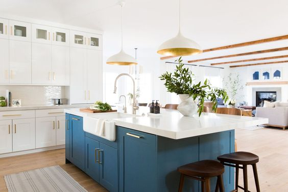 Kitchen Inspiration-Obsessing Over Beautiful Pops of Color in These Beautiful Kitchens 7.jpg