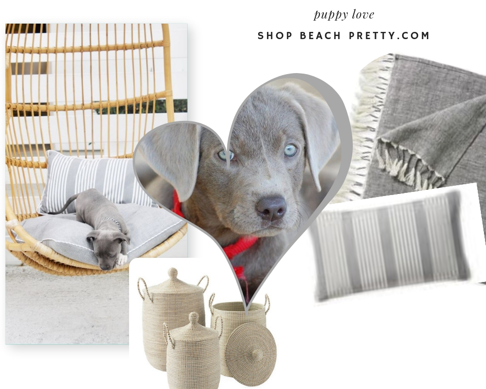Afternoon of Puppy Love-Counterclockwise: 1.  Swing  2.  Grey Throw  3.  Grey Throw Pillow  4.  Baskets