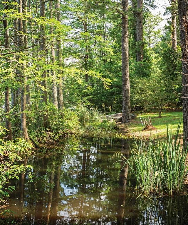 Three Beautiful Lakeside Cabins 57.jpg