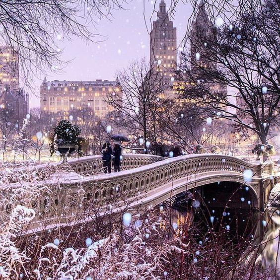 Dreaming of Central Park.. via
