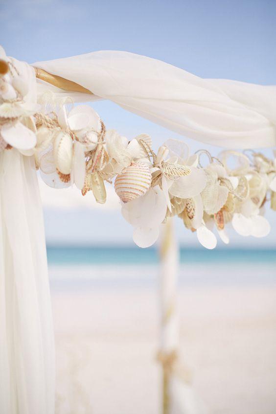 hunt for seashells by the seashore ….