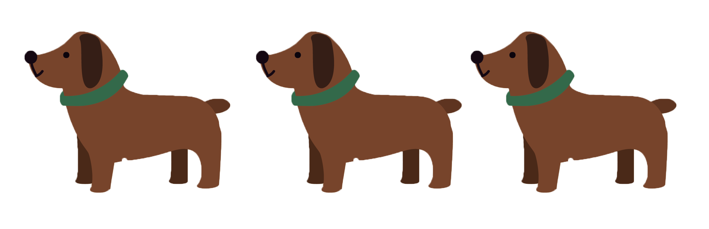 Dog training packages with positive reinforcement trainer in Maryland.