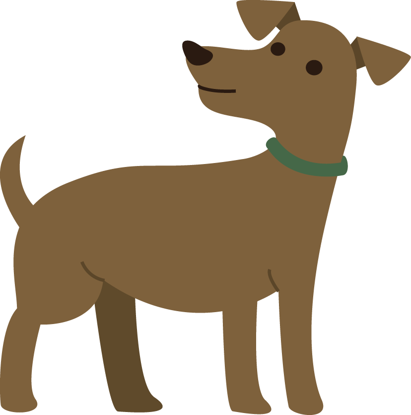 Behavior consultation for aggressive dog or puppy in Maryland.