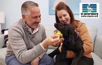 """🐾 We love our local and traveling furry guests! @stpetefl has so many pet-friendly places to enjoy with your pup, which is why Mayor @rickkriseman was honored to receive the 2019 Best City for Pets Award in the US Conference of Mayors this past May! How cool is that? 😎💛🏆🥇⭐️ """"Learn more about the St. Pete Paws Program where businesses are invited to apply for the Mayor's Pet-Friendly Business program to take part in the movement to make St. Pete a place where pets are happy, healthy and welcome (website)."""" And for all the St. Pete Local Pet L💙VERS, there's a club that you'll want to join called the St. Pete Pup Club, where you get PupPerks all around town! Follow them on Instagram at @stpetepupclub then head to their website, https://www.stpetepupclub.com/, to check out their fun blog which highlights some of the coolest pups in the Burg!"""