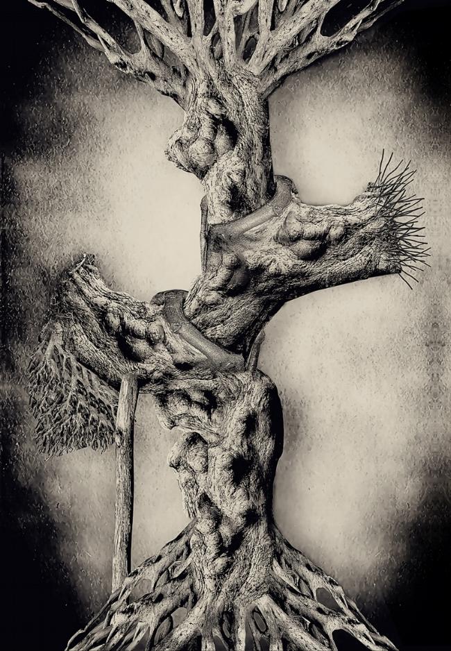 Tree of (my life), Mohammed Alanezi, Photography, digital print on canvas, 122x85cm