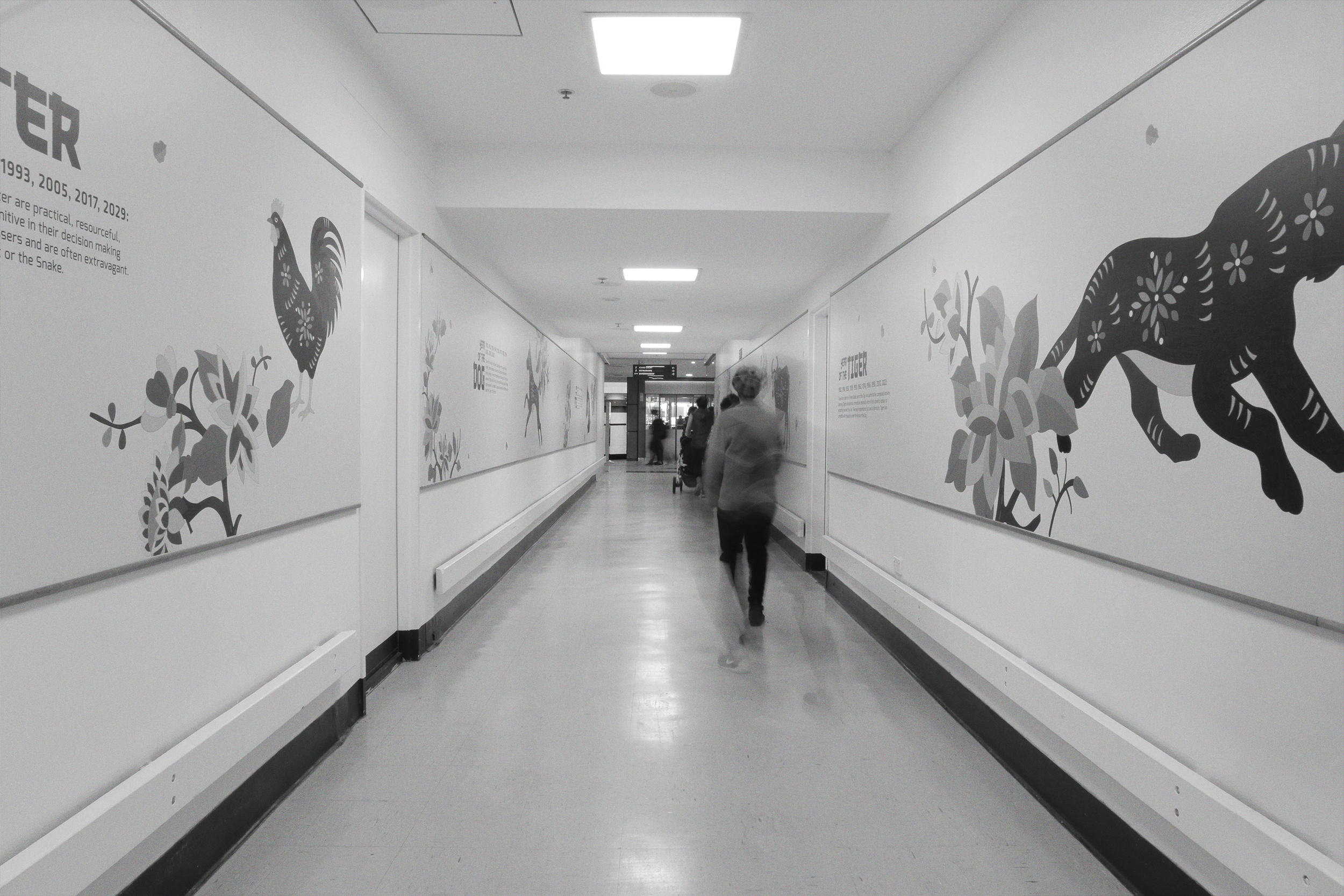 CNY-Hallway Decal-Portfolio-05.jpg