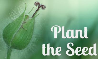 PlanttheSeed.jpg