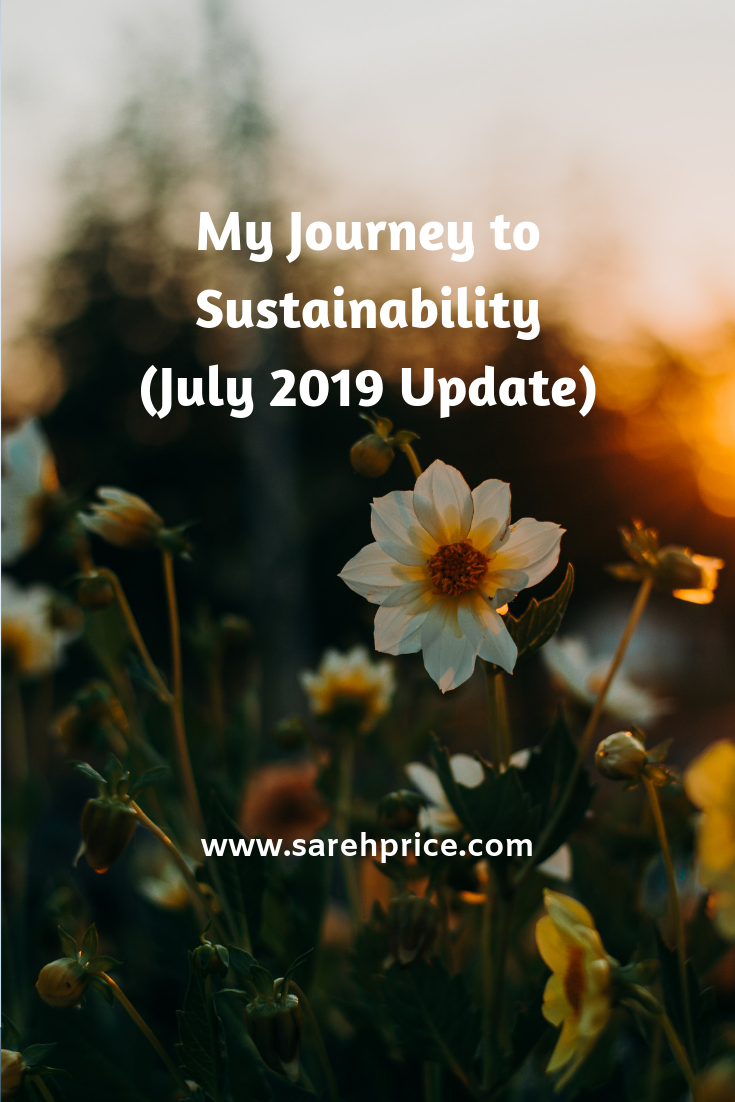 My Journey to Sustainability July 2019 Update