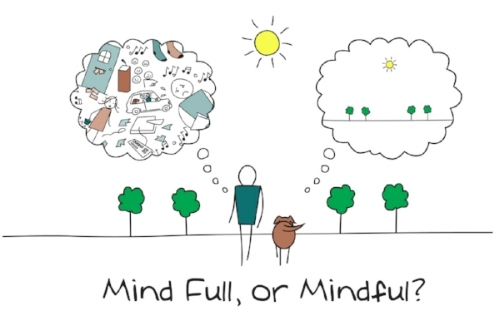 mind-full-or-mindful.jpg