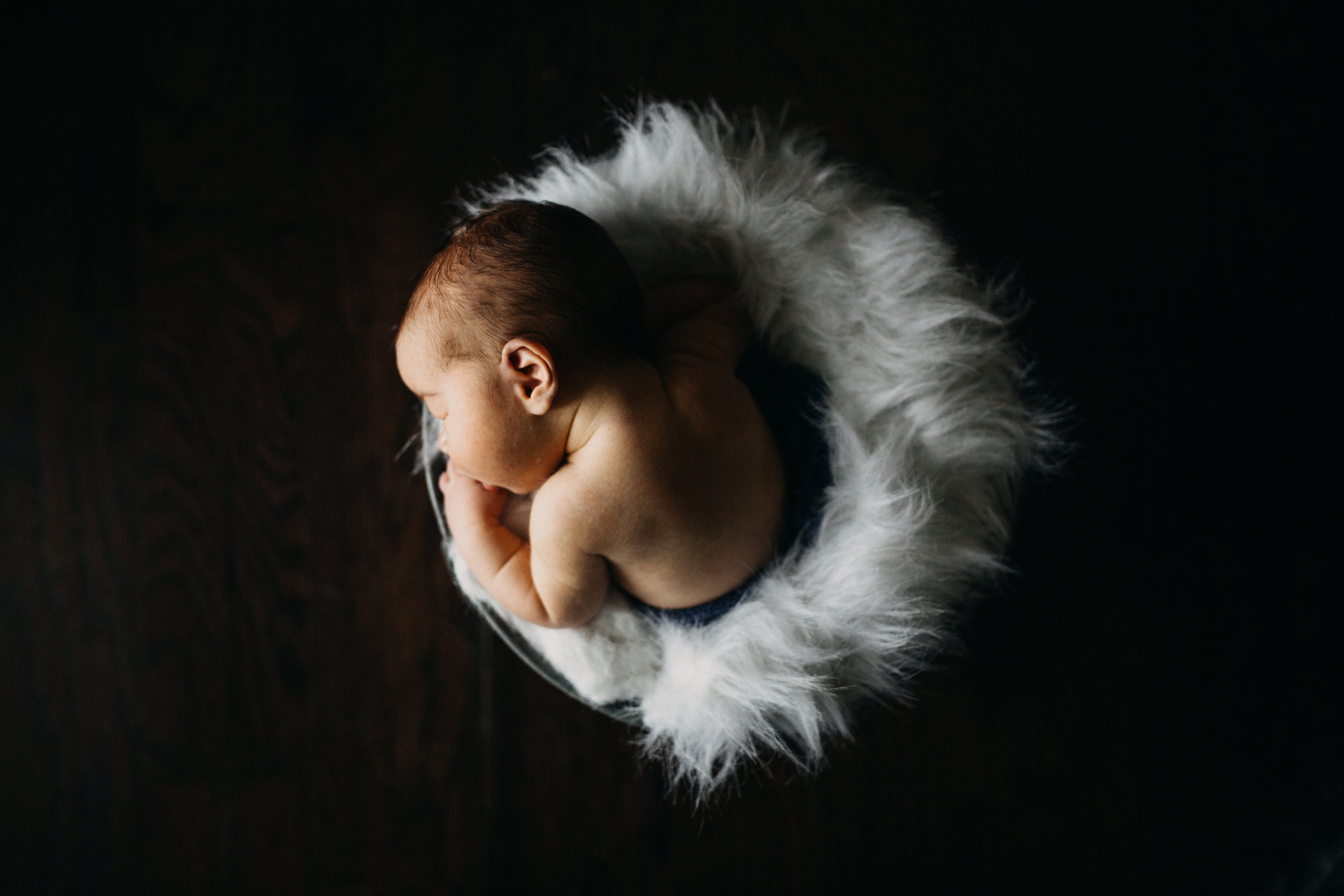 newborn photographer in springfield mo