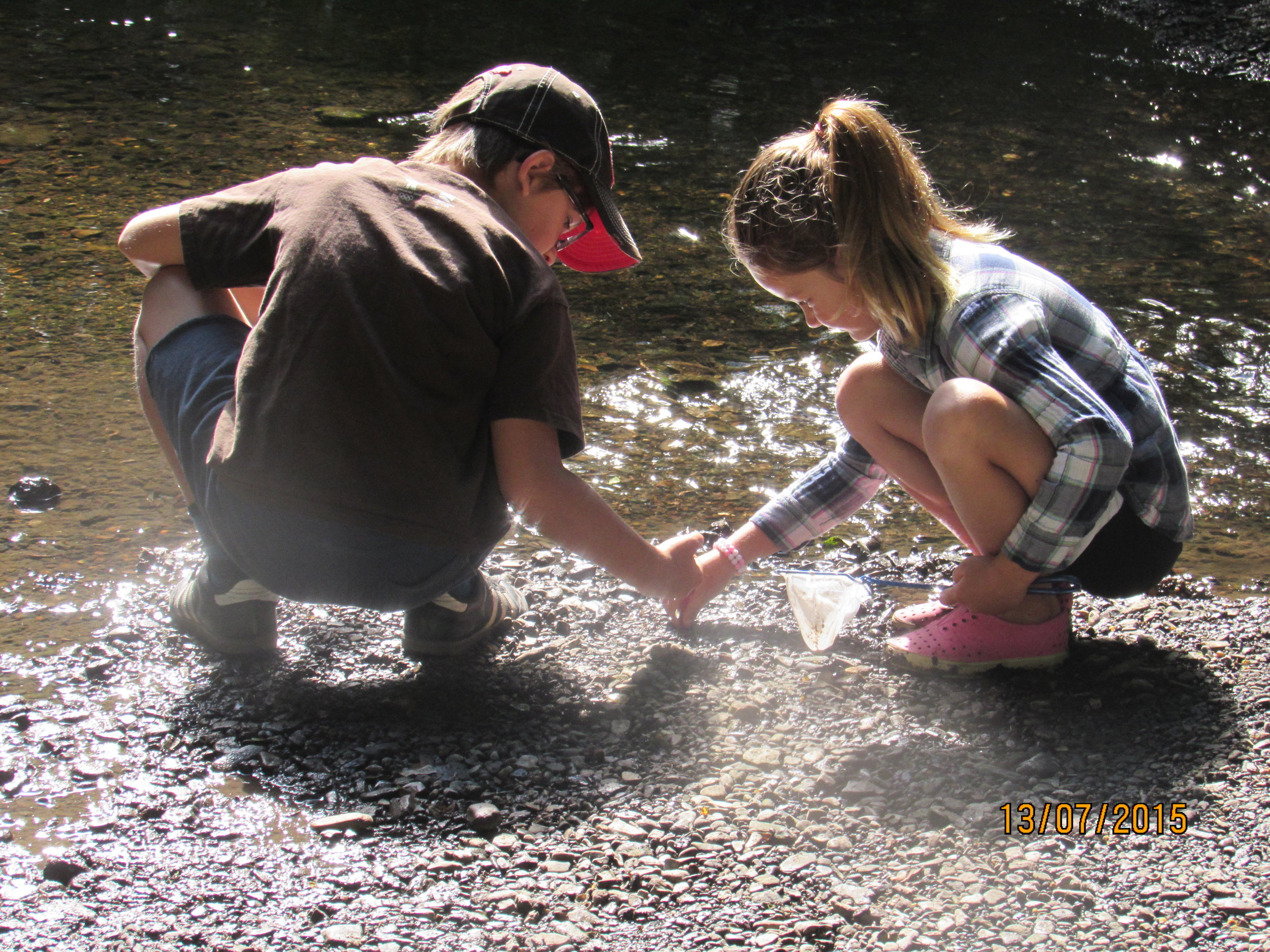 Searching for invertebrates in freshwater creeks, students learn a good deal about the insects that inhabit riparian ecosystems.