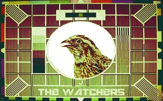 the watchers zine