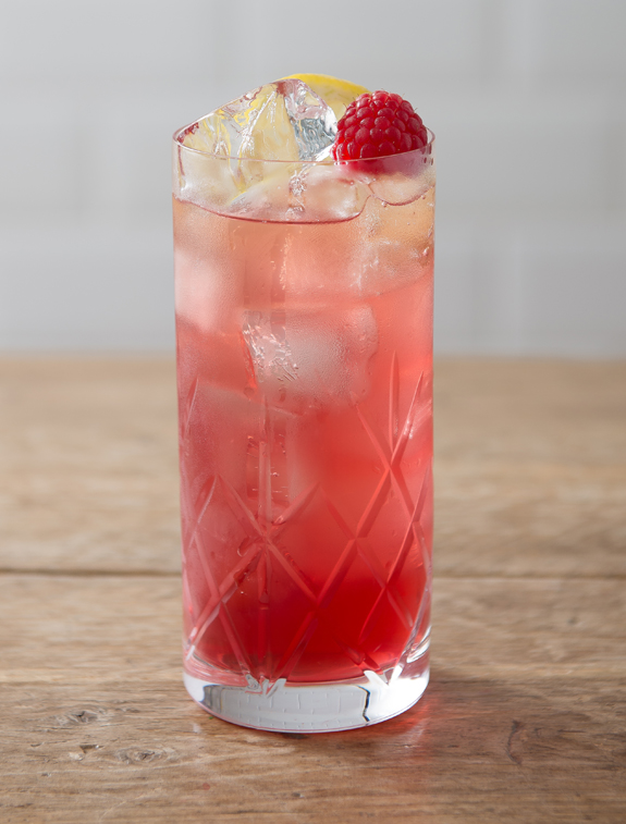 Raspberry Shurb Collins.jpg