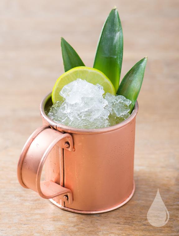Coconut Rum Punch.jpg