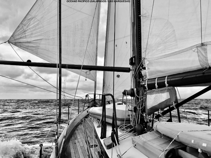 A great B&W picture, down wind with code zero and poled out genoa to windward