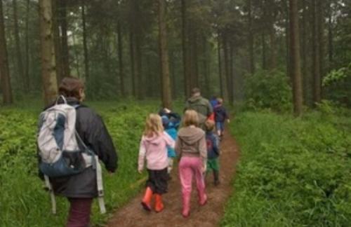 wendover-woods.jpg