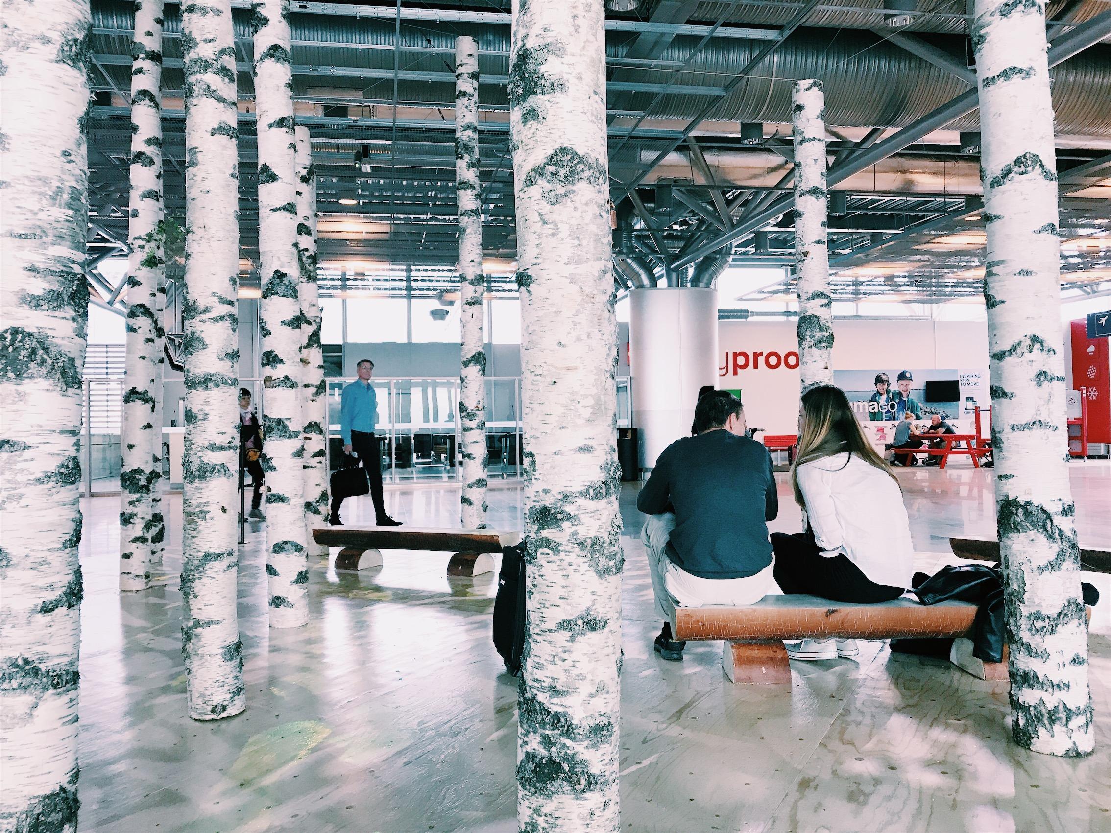 """フィンランドの空港にて。大勢の人がせわしなく行き交うにぎやかなエリアを通り抜けたところに、突然出現した、静かでいかにも""""フィンランド的""""な空間。(白樺は、フィンランドの""""国の木""""だよ。)"""