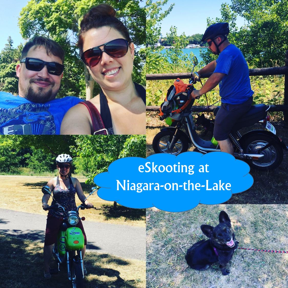 eskoot in niagara on the lake