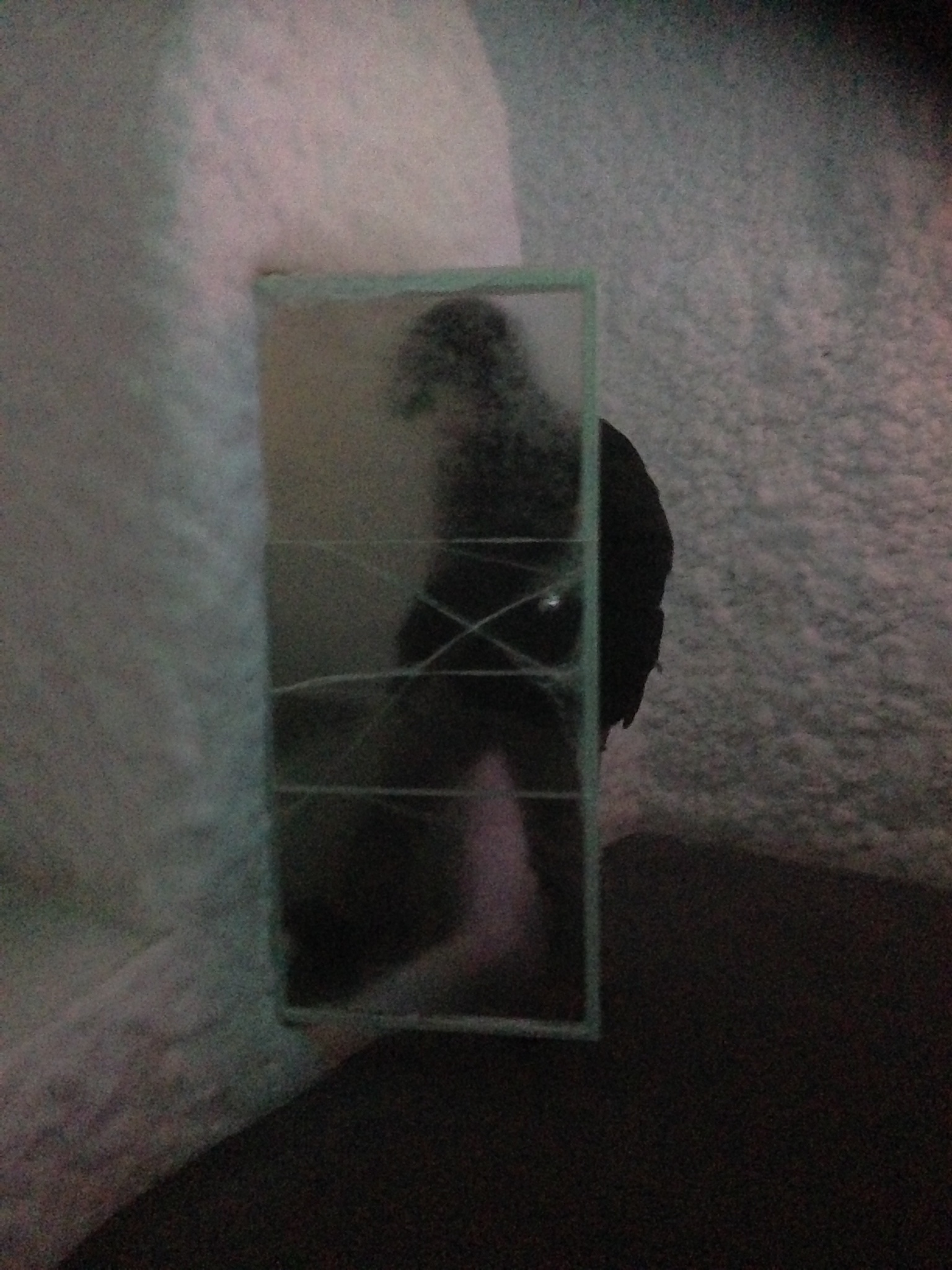 thin ice door at aurora ice museum