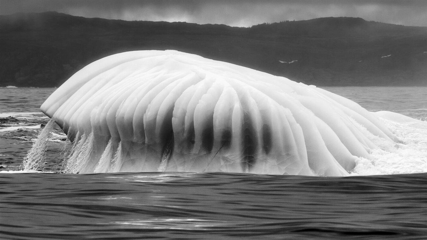 """ Iceberg "", by Geoff Whiteway"