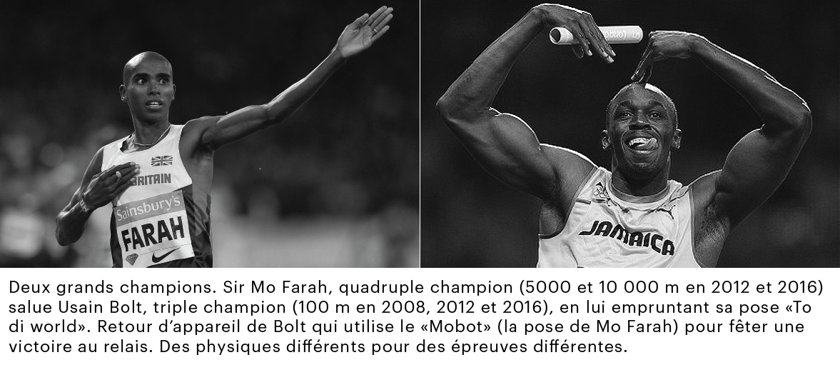 GRAPH_BOLT-FARAH_2.jpg