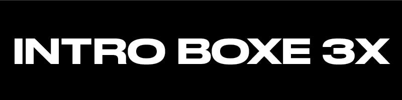 229$ - 3 SÉANCES COACHING PRIVÉPOUR INTRODUCTIONÀ LA BOXE