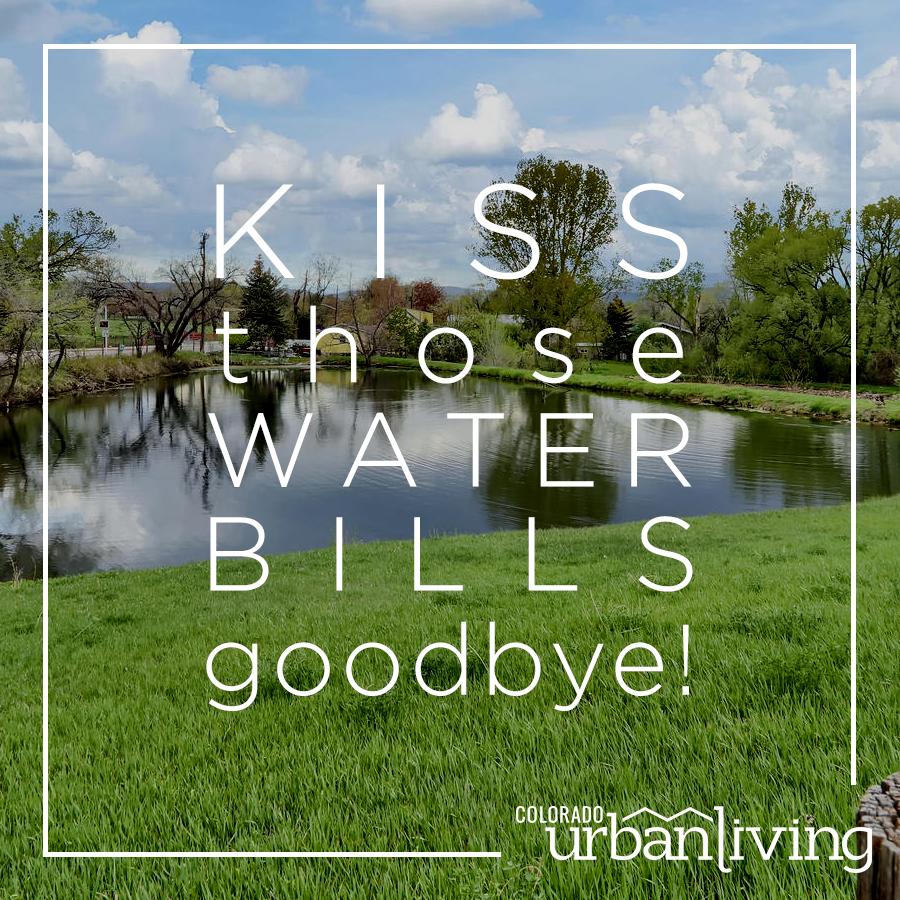 Kiss those water bills goodbye - ad (1).jpg
