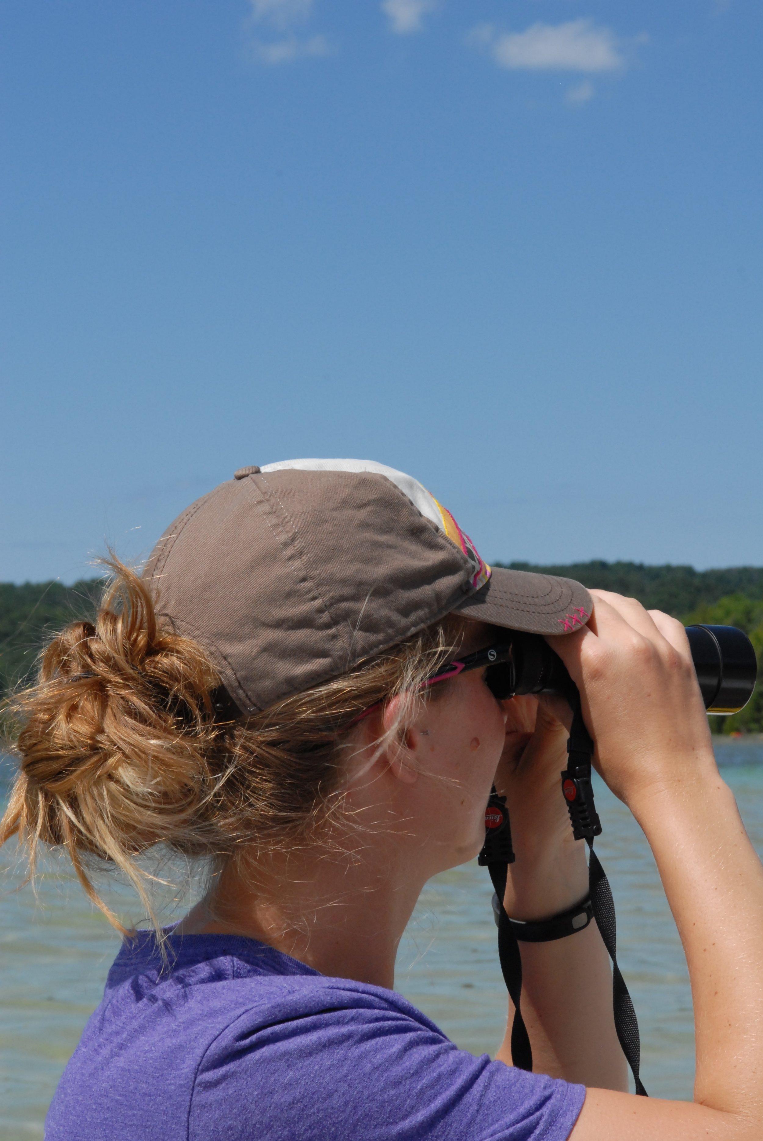 Looking for merganser broods