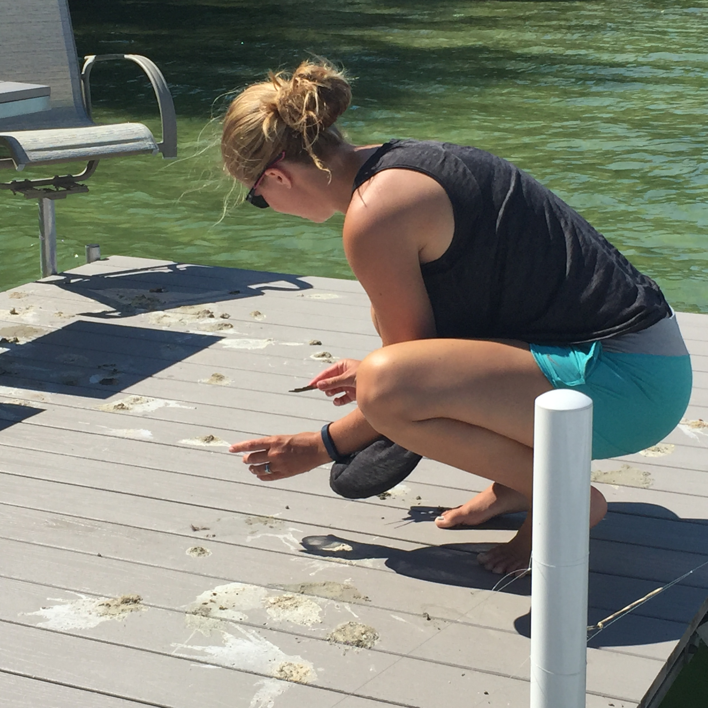 "Collecting ""poop"" samples from a dock to check for parasites"