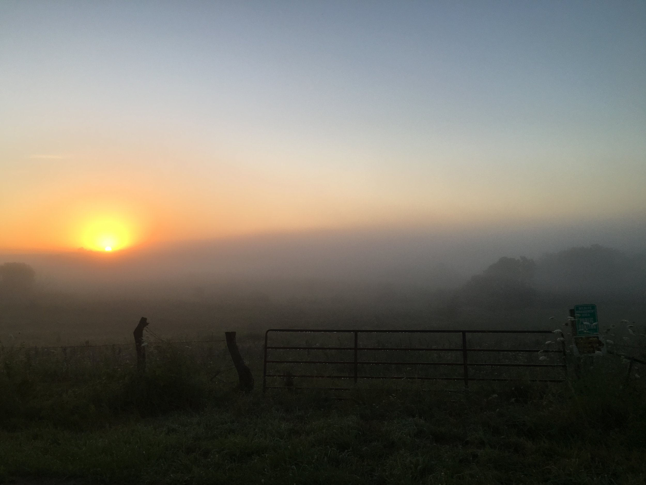 JJC_foggy sunrise_RCH_2016.JPG