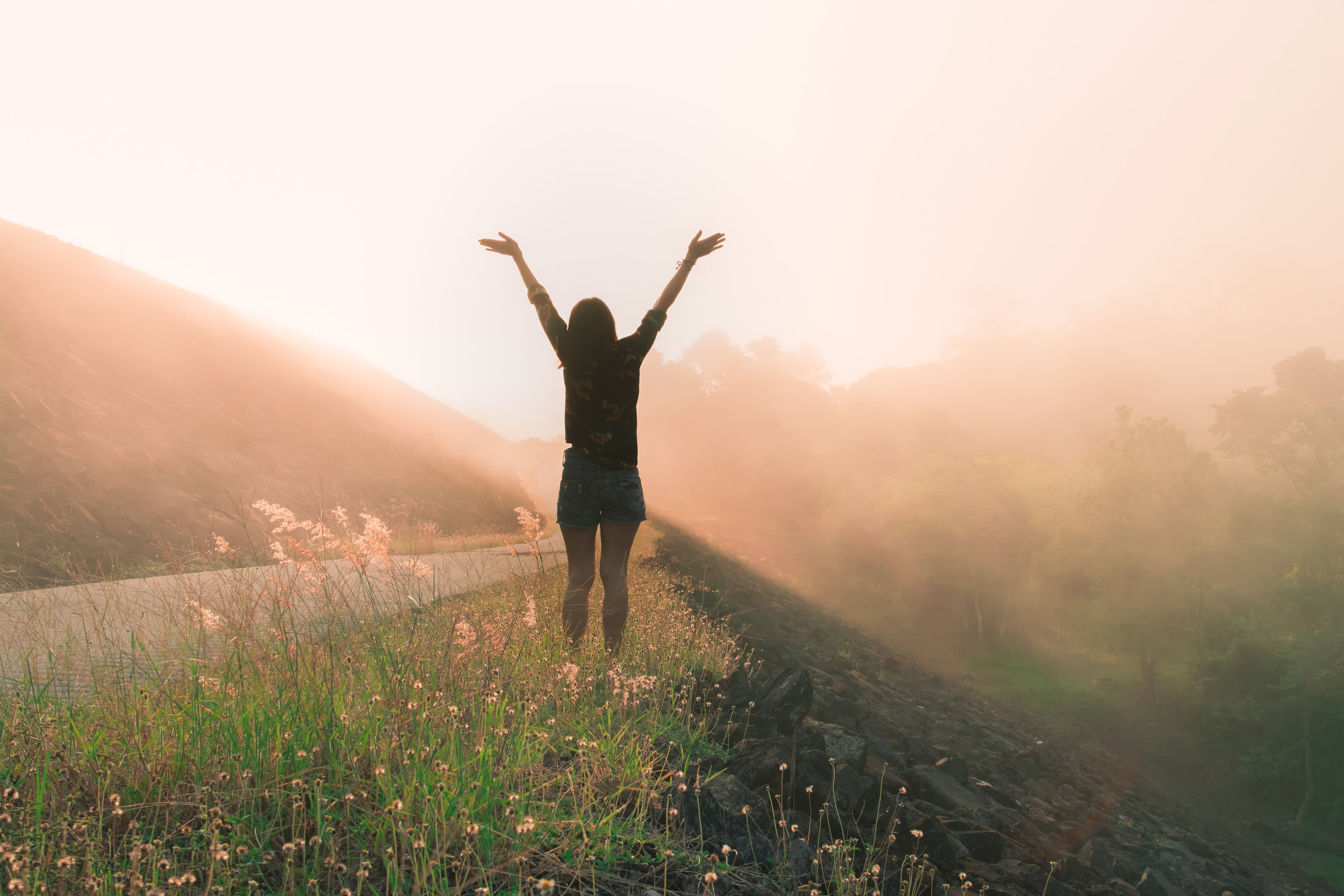 Woman arms in air meadow.jpeg