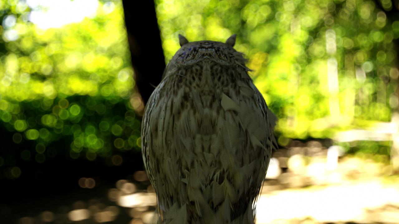 Owl3D.jpg