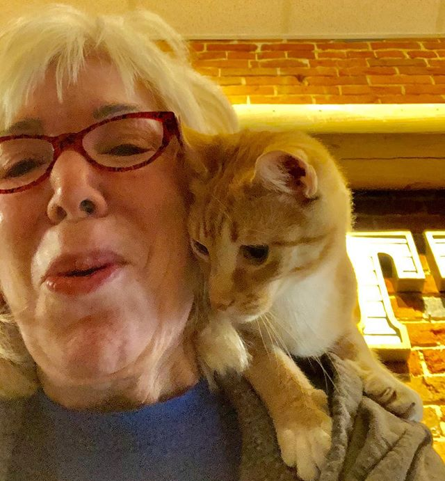 Sometimes Albert wants some up close and personal time with Mommy. 😻 #Albert #riverkittycatcafe #downtownevansville #upcloseandpersonal 🥰😻🐾